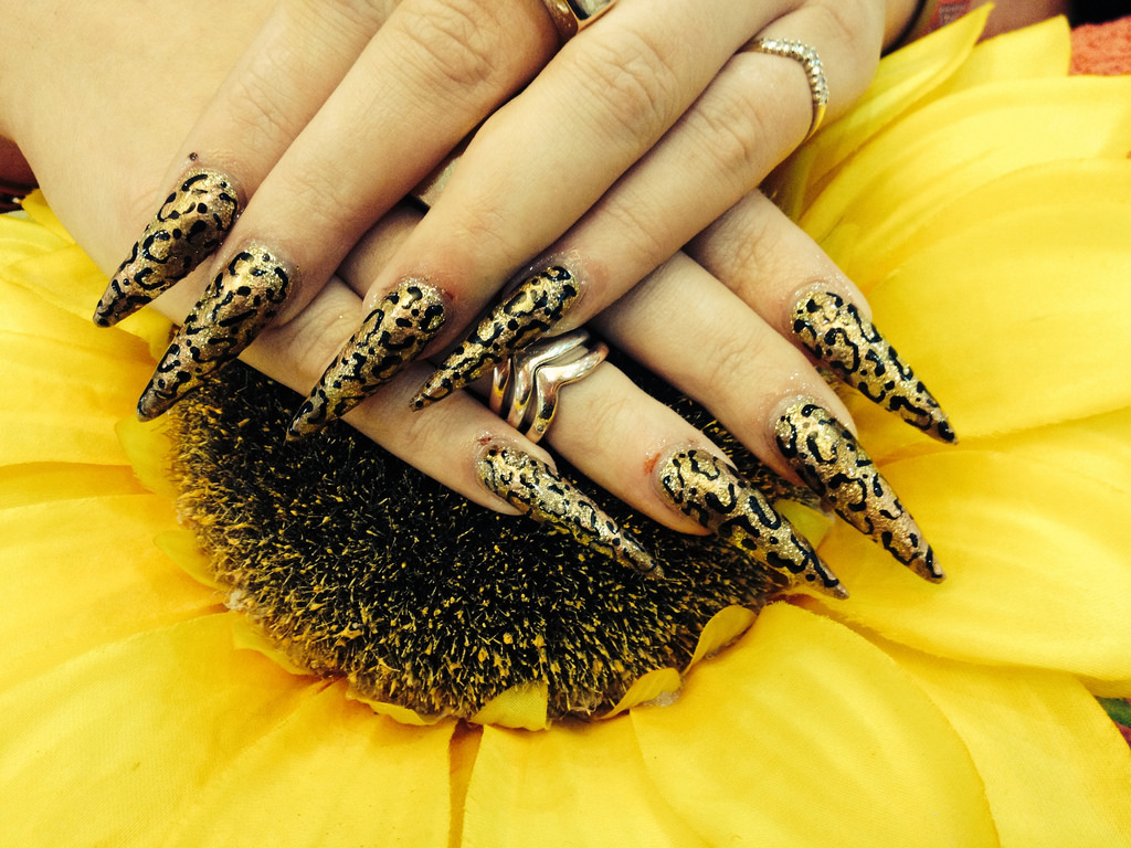 Stiletto Nails With Leopard Print Nail Art2 Nail Designs For You
